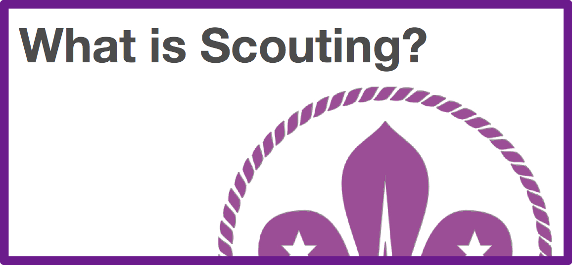 NAVScouting